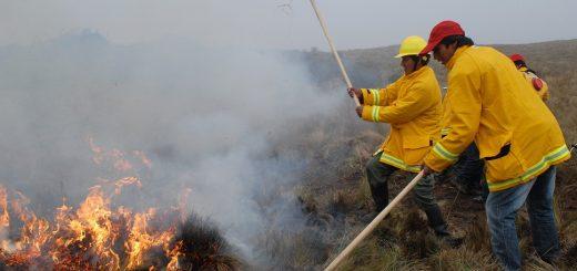 brigada incendios forestales manu 1